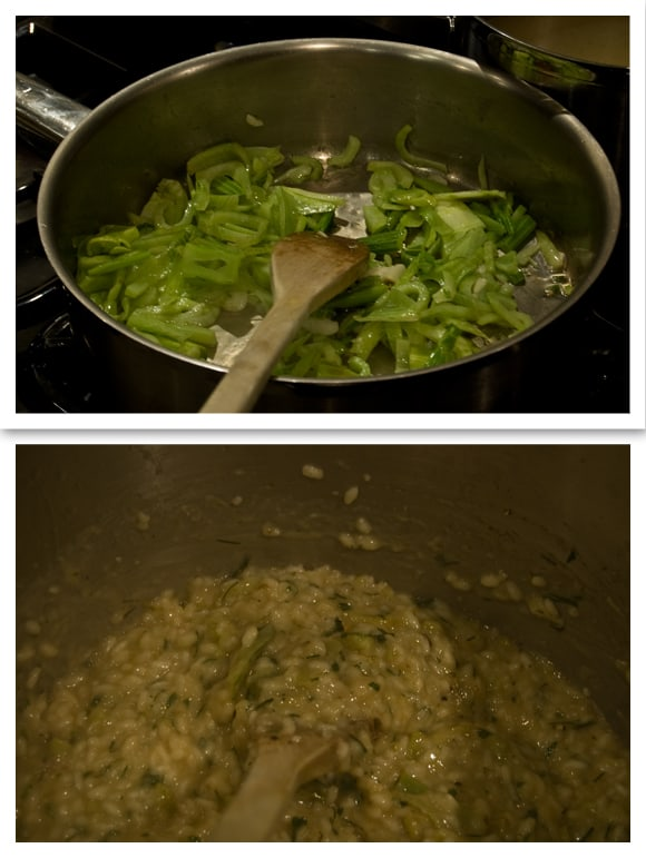 Risotto on the go