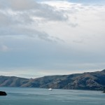 Cruise Ship in Akaroa Harbour