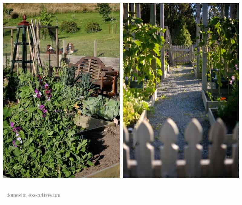 Kitchen Garden 113