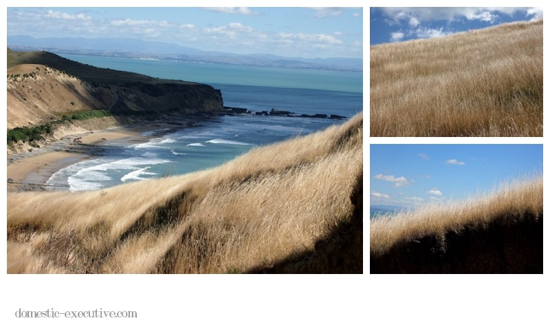 Cape Kidnappers 2014 03 033