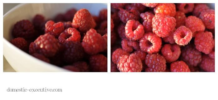 Berries 2015-01-03